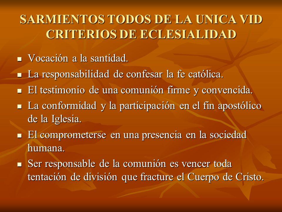 SARMIENTOS TODOS DE LA UNICA VID CRITERIOS DE ECLESIALIDAD