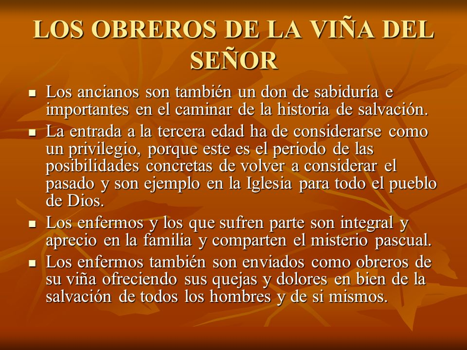 LOS OBREROS DE LA VIÑA DEL SEÑOR