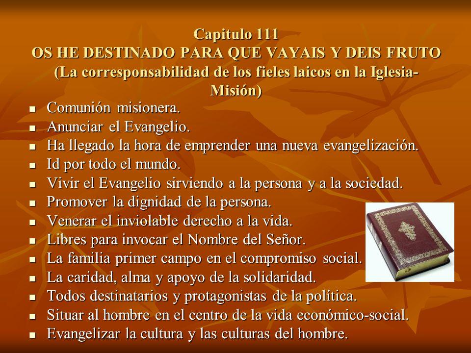 Capitulo 111 OS HE DESTINADO PARA QUE VAYAIS Y DEIS FRUTO (La corresponsabilidad de los fieles laicos en la Iglesia-Misión)