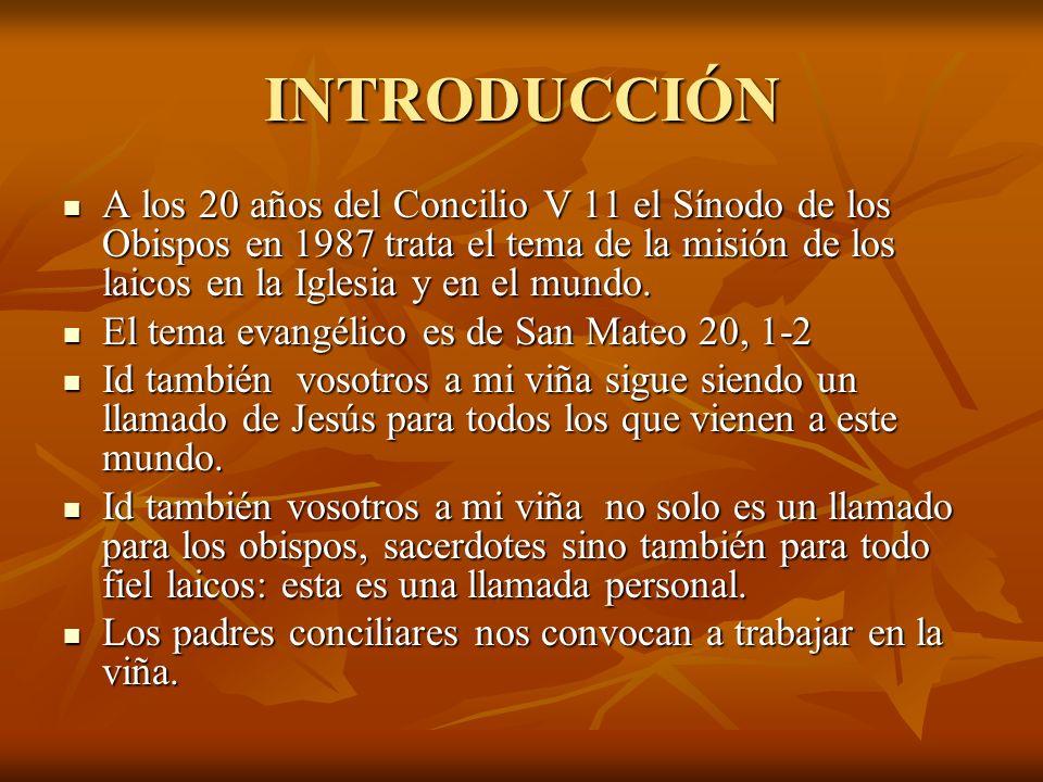 INTRODUCCIÓN A los 20 años del Concilio V 11 el Sínodo de los Obispos en 1987 trata el tema de la misión de los laicos en la Iglesia y en el mundo.