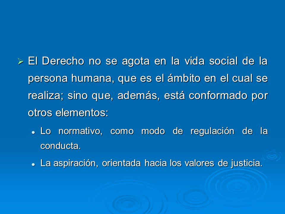 El Derecho no se agota en la vida social de la persona humana, que es el ámbito en el cual se realiza; sino que, además, está conformado por otros elementos: