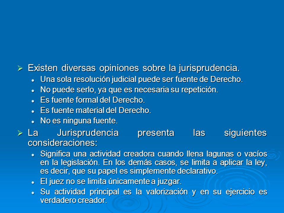 Existen diversas opiniones sobre la jurisprudencia.
