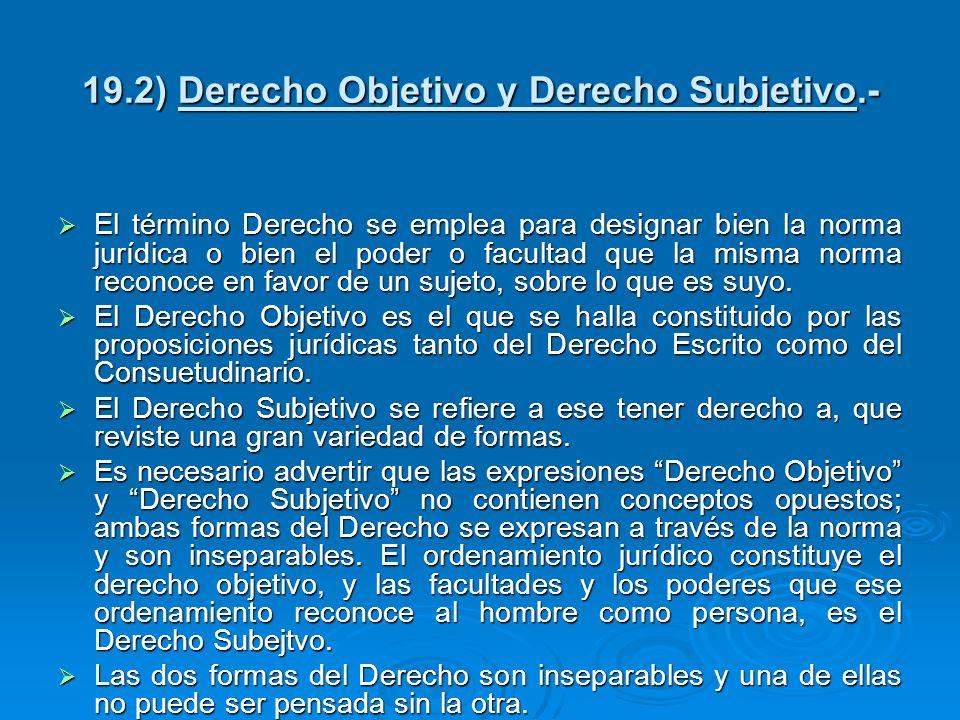 19.2) Derecho Objetivo y Derecho Subjetivo.-