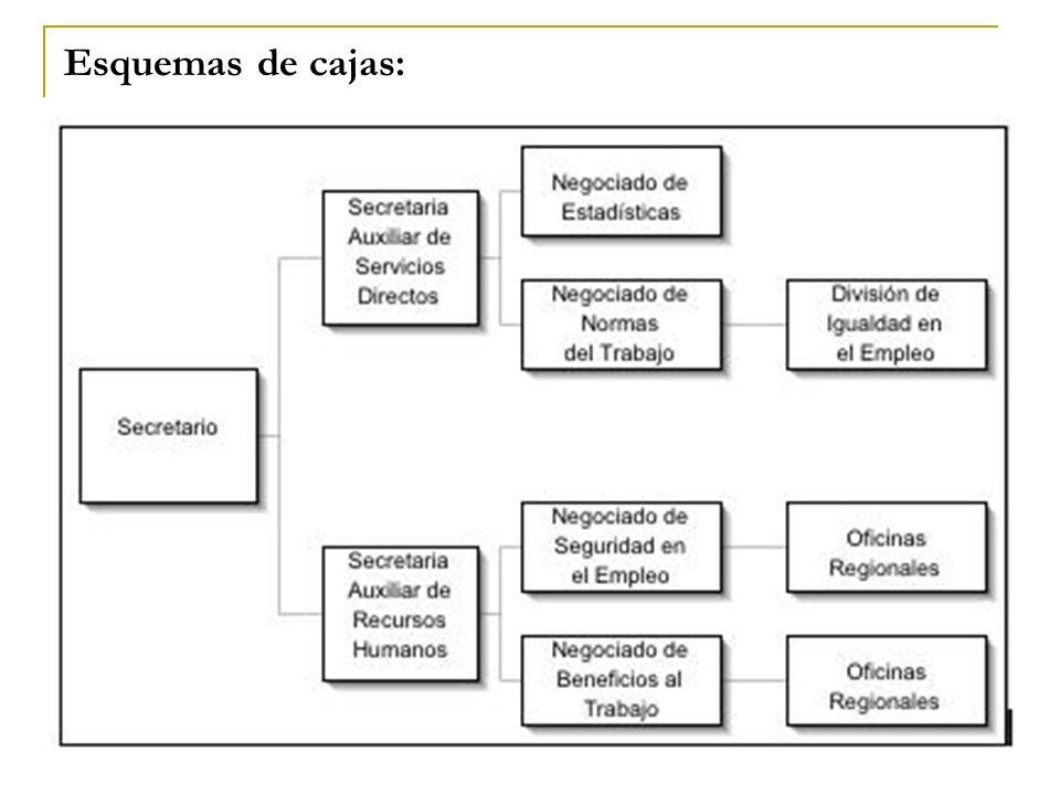 Esquemas de cajas: Para representar estructuras jerárquicas, organizaciones.