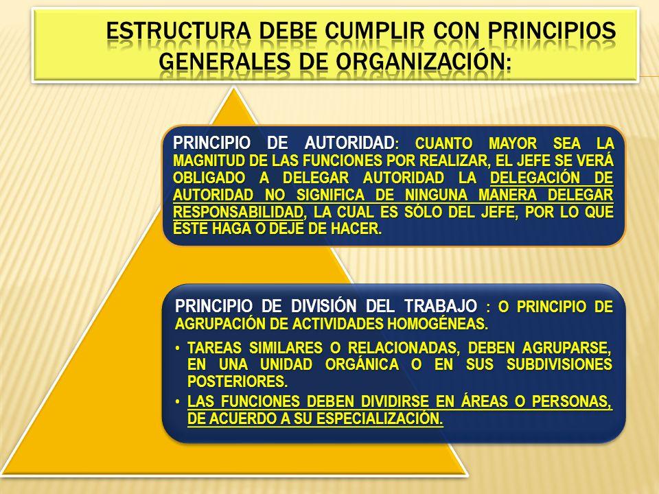 ESTRUCTURA DEBE CUMPLIR CON PRINCIPIOS GENERALES DE ORGANIZACIÓN: