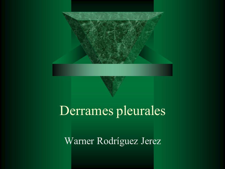Warner Rodríguez Jerez