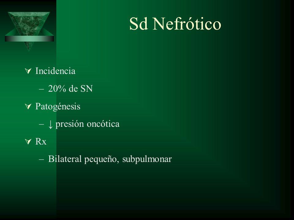 Sd Nefrótico Incidencia 20% de SN Patogénesis ↓ presión oncótica Rx
