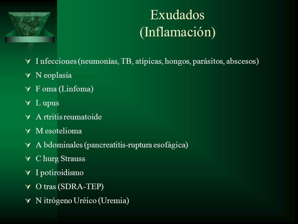 Exudados (Inflamación)