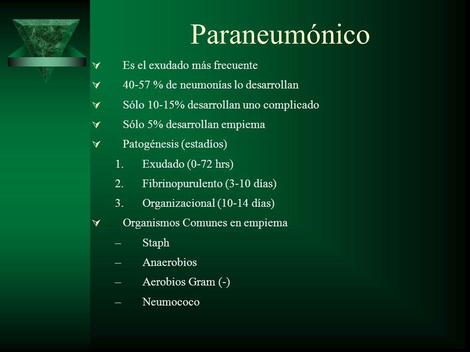 Paraneumónico Es el exudado más frecuente