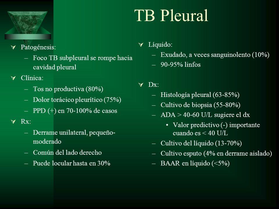 TB Pleural Líquido: Patogénesis: Exudado, a veces sanguinolento (10%)