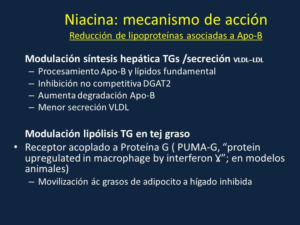 Niacina: mecanismo de acción Reducción de lipoproteínas asociadas a Apo-B
