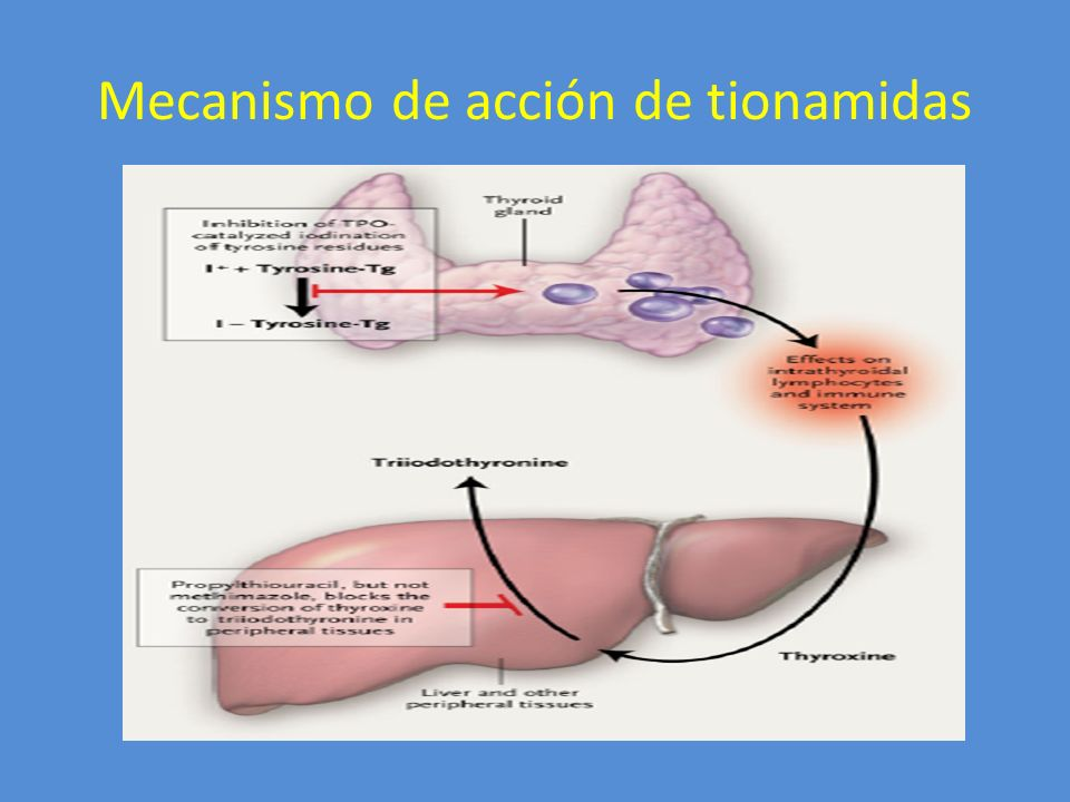 Mecanismo de acción de tionamidas
