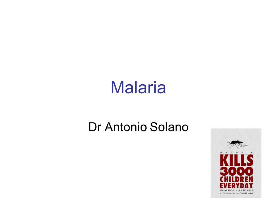 Malaria Dr Antonio Solano