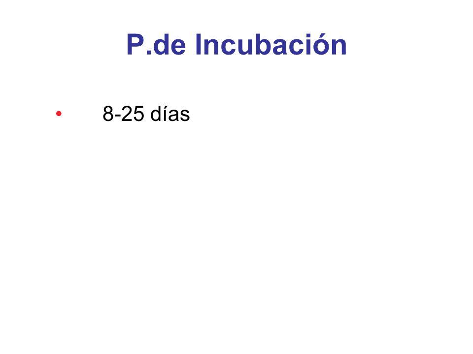P.de Incubación 8-25 días