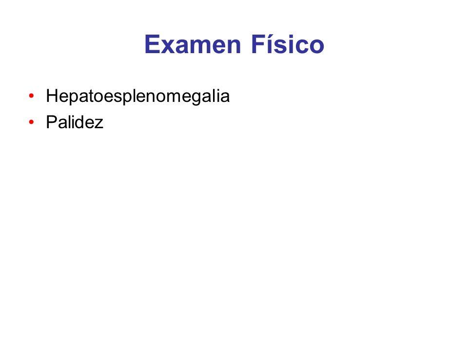 Examen Físico Hepatoesplenomegalia Palidez