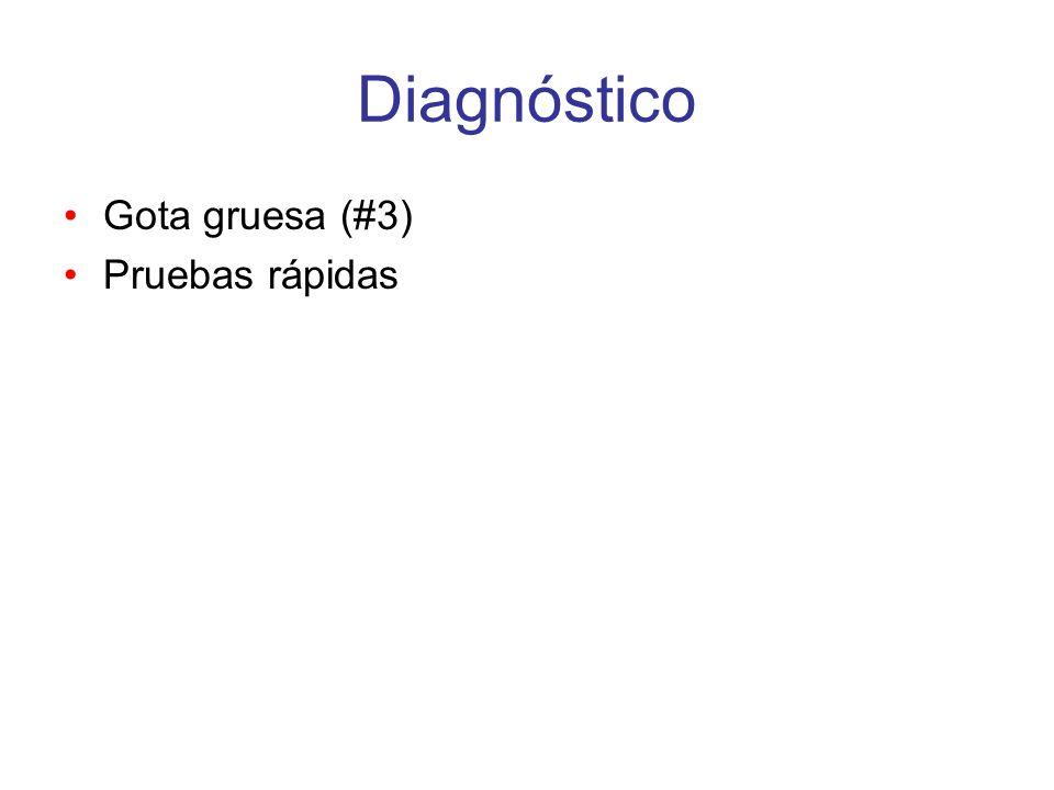 Diagnóstico Gota gruesa (#3) Pruebas rápidas