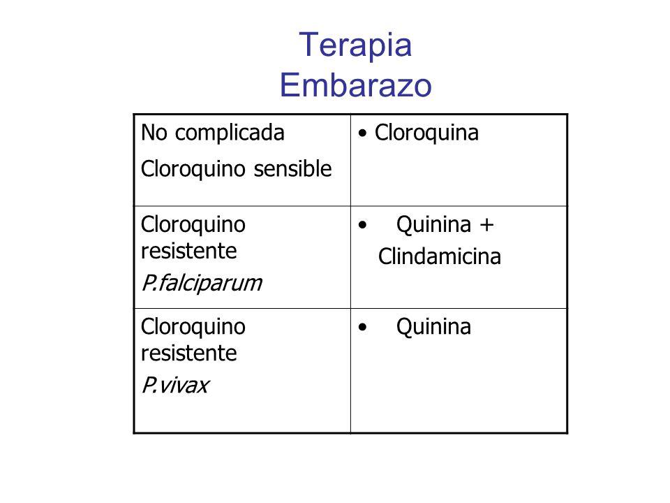 Terapia Embarazo No complicada Cloroquino sensible Cloroquina