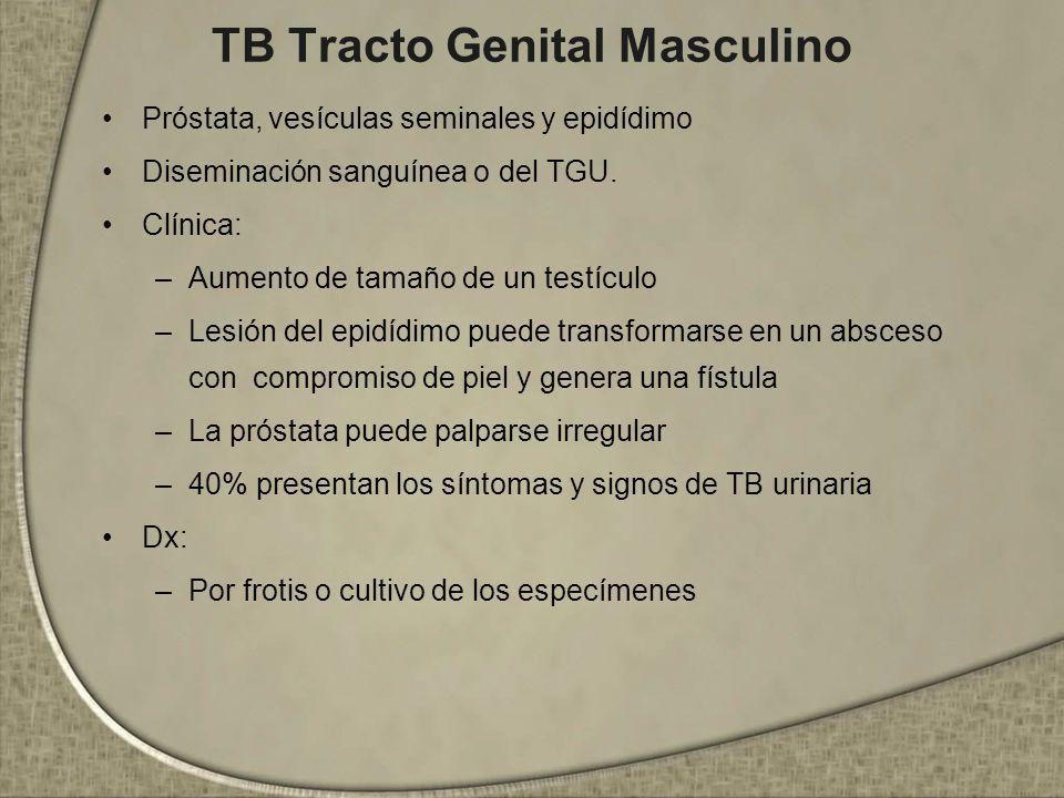 TB Tracto Genital Masculino