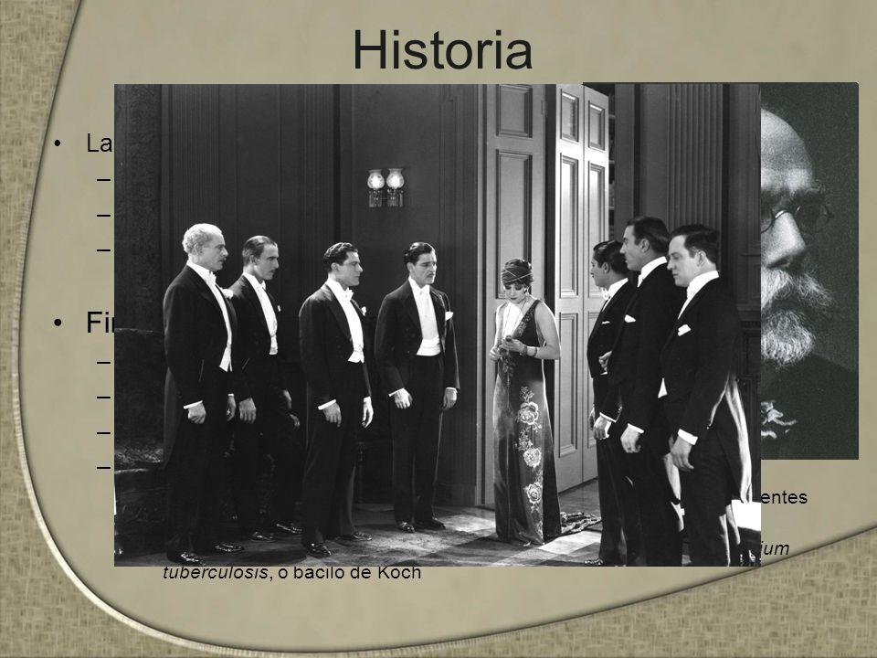 Historia Finales del siglo XIX La enfermedad romántica