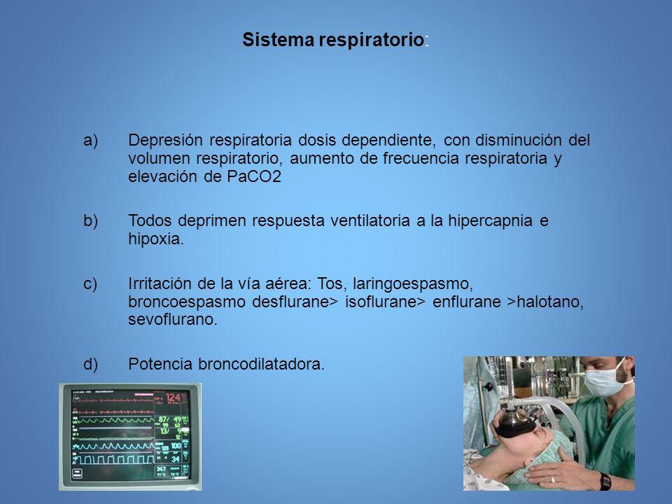 Sistema respiratorio: