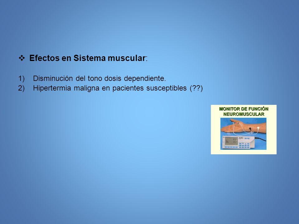 Efectos en Sistema muscular: