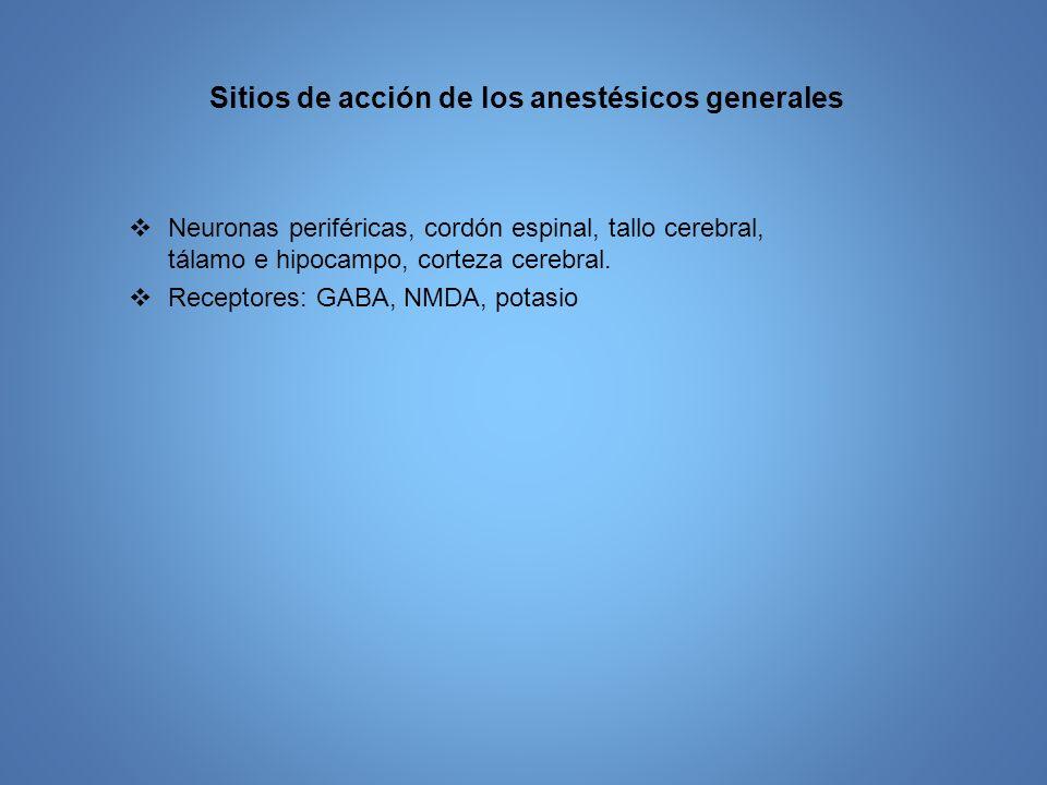 Sitios de acción de los anestésicos generales