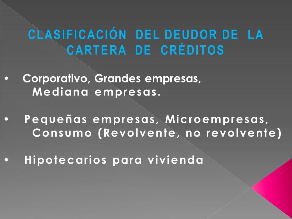 CLASIFICACIÓN DEL DEUDOR DE LA CARTERA DE CRÉDITOS