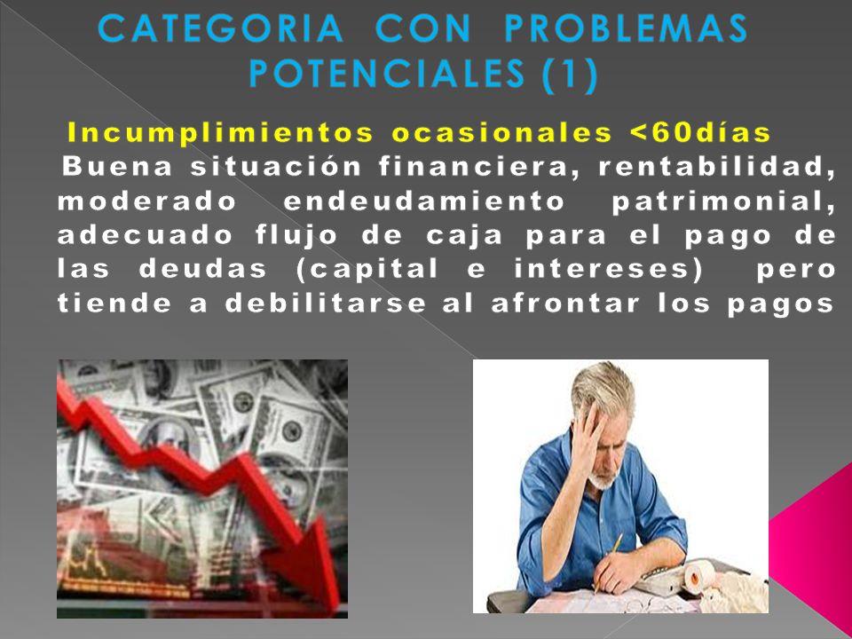 CATEGORIA CON PROBLEMAS POTENCIALES (1)