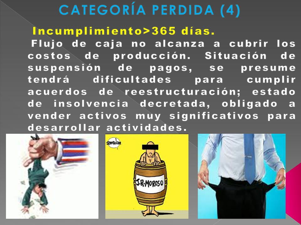 CATEGORÍA PERDIDA (4) Incumplimiento>365 días.