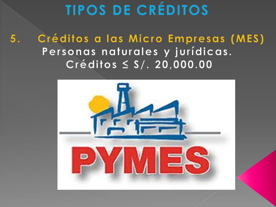 5. Créditos a las Micro Empresas (MES) Personas naturales y jurídicas.