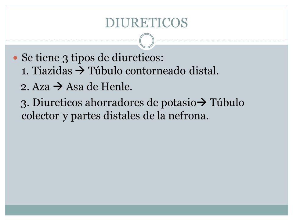 DIURETICOS Se tiene 3 tipos de diureticos: 1. Tiazidas  Túbulo contorneado distal. 2. Aza  Asa de Henle.