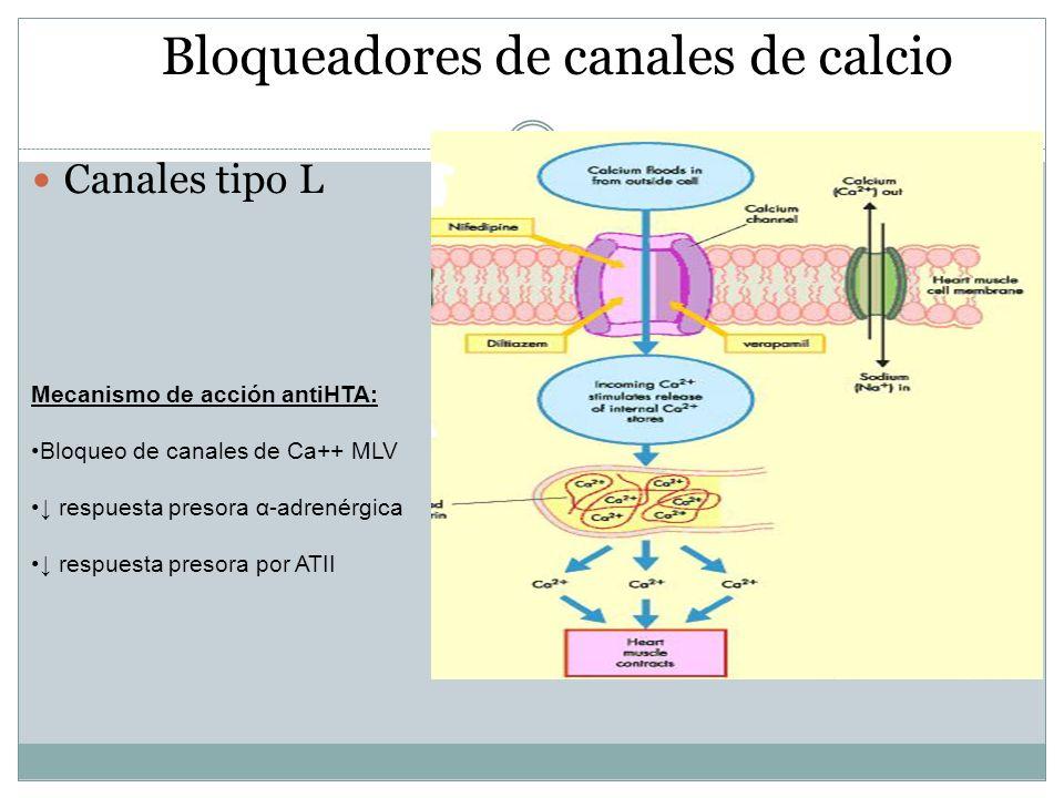 Bloqueadores de canales de calcio