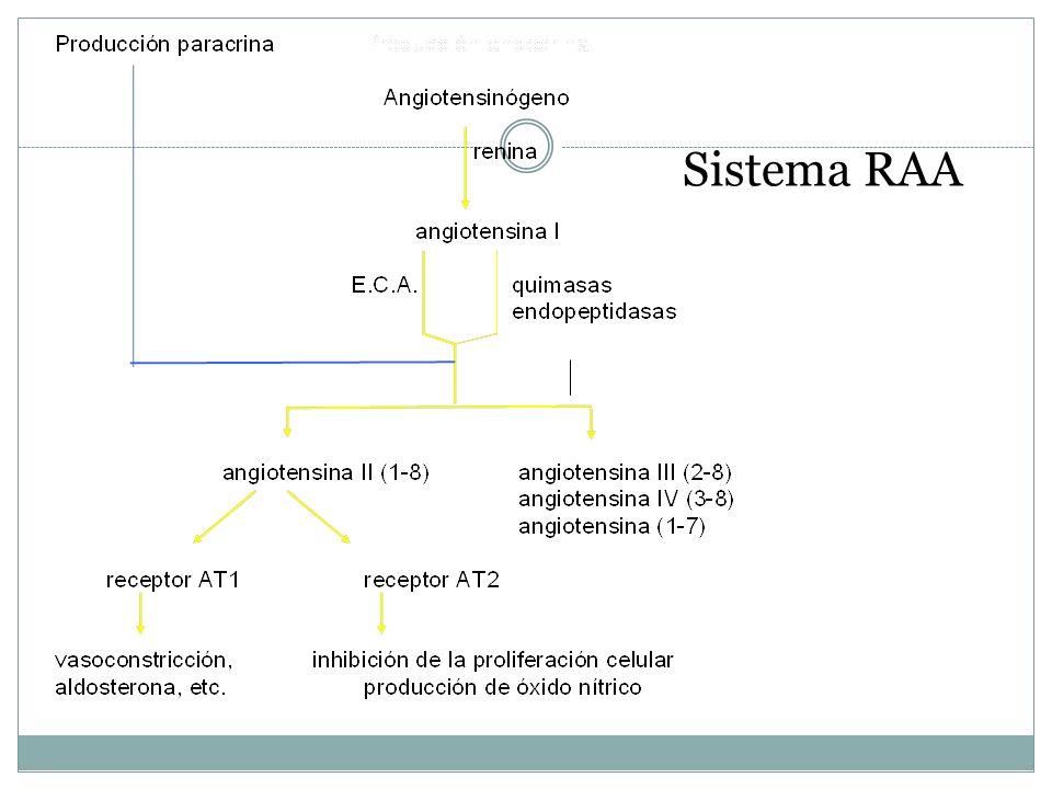 Sistema RAA