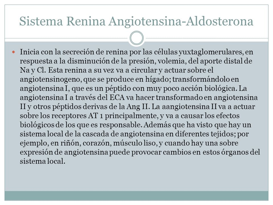 Sistema Renina Angiotensina-Aldosterona