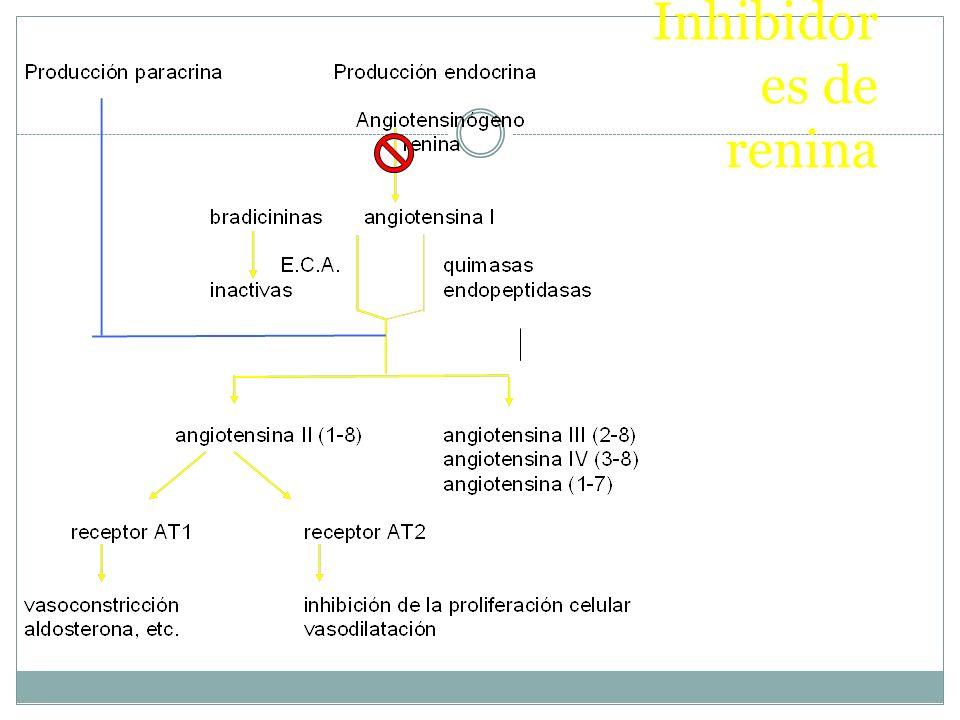 Inhibidores de renina