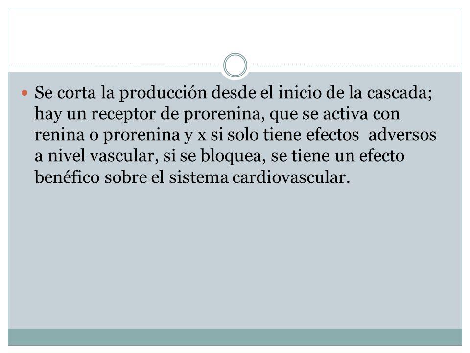 Se corta la producción desde el inicio de la cascada; hay un receptor de prorenina, que se activa con renina o prorenina y x si solo tiene efectos adversos a nivel vascular, si se bloquea, se tiene un efecto benéfico sobre el sistema cardiovascular.