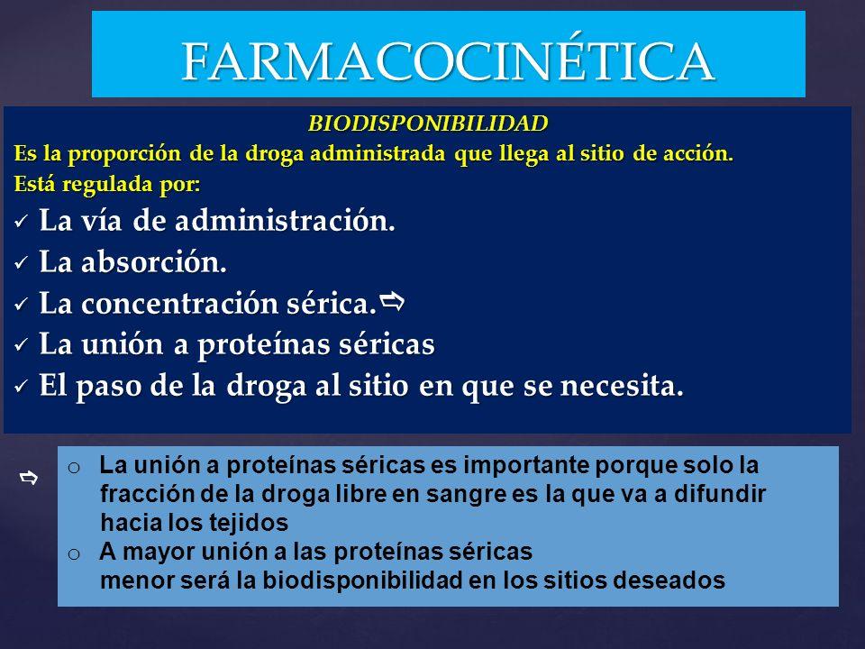 FARMACOCINÉTICA La vía de administración. La absorción.