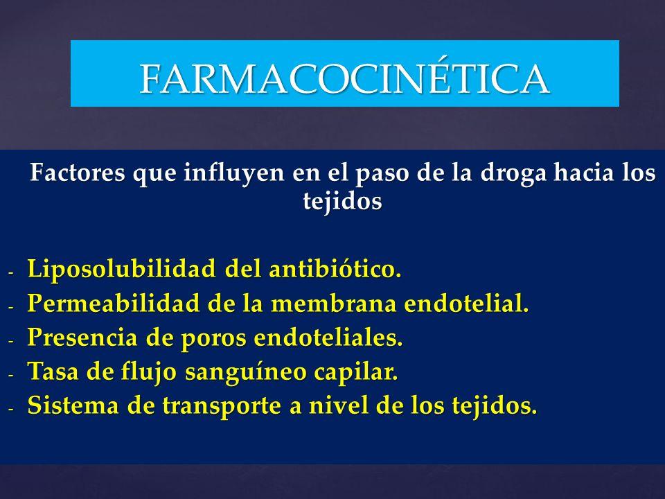 Factores que influyen en el paso de la droga hacia los tejidos