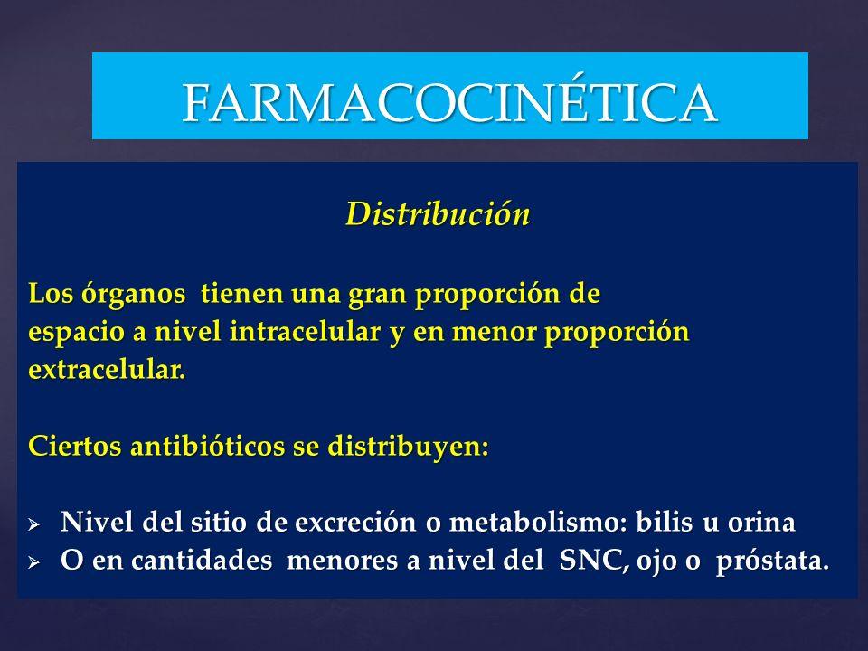FARMACOCINÉTICA Distribución Los órganos tienen una gran proporción de