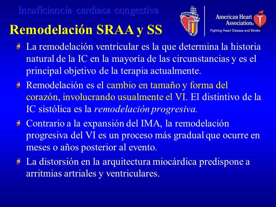 Remodelación SRAA y SS