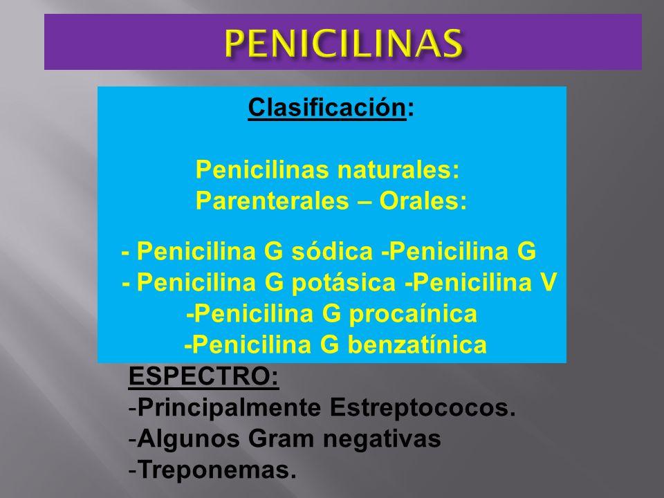 PENICILINAS Clasificación: Penicilinas naturales: