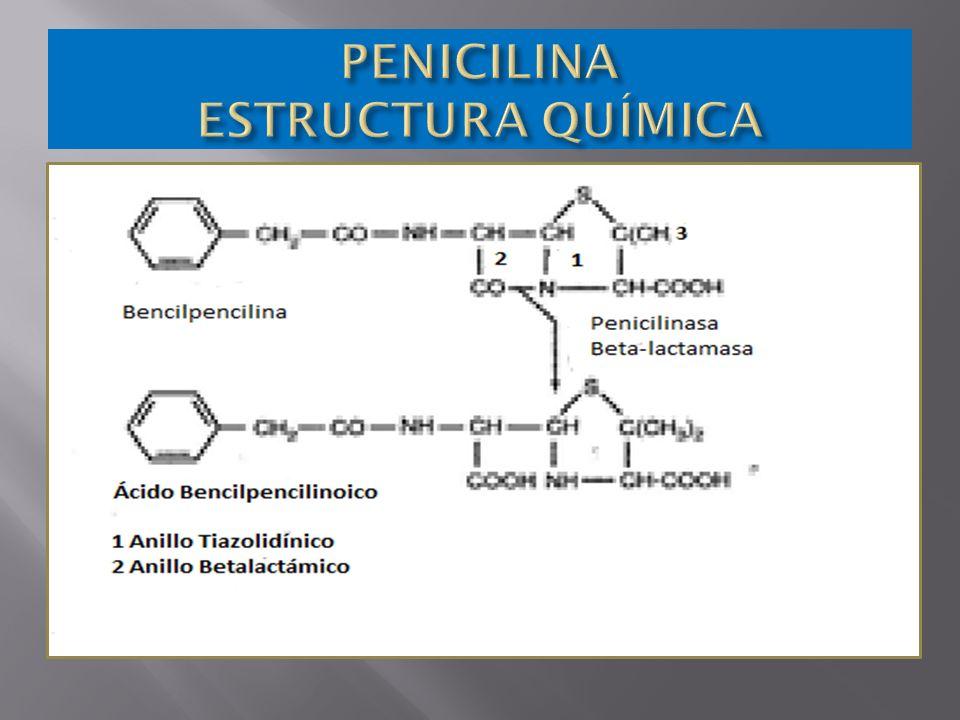 PENICILINA ESTRUCTURA QUÍMICA