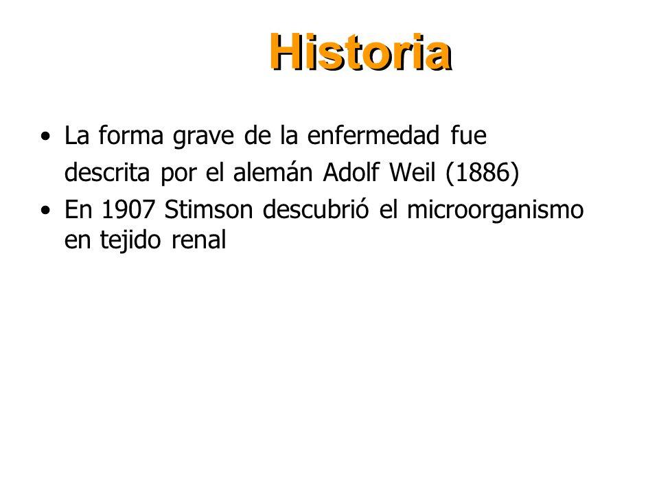 Historia La forma grave de la enfermedad fue