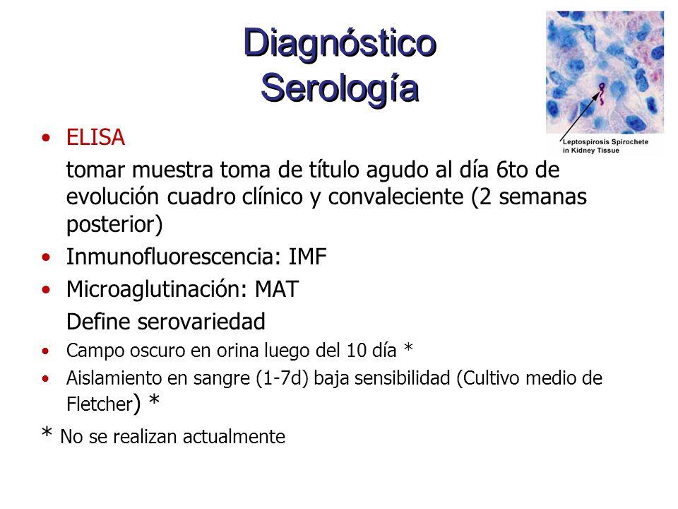 Diagnóstico Serología