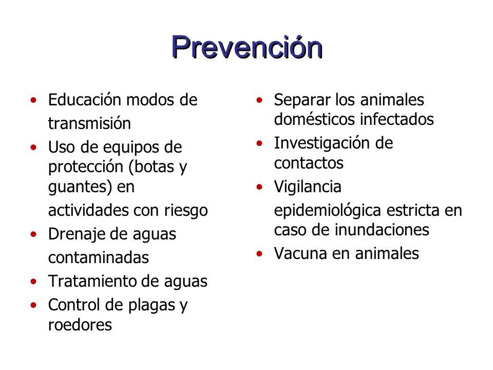 Prevención Educación modos de transmisión