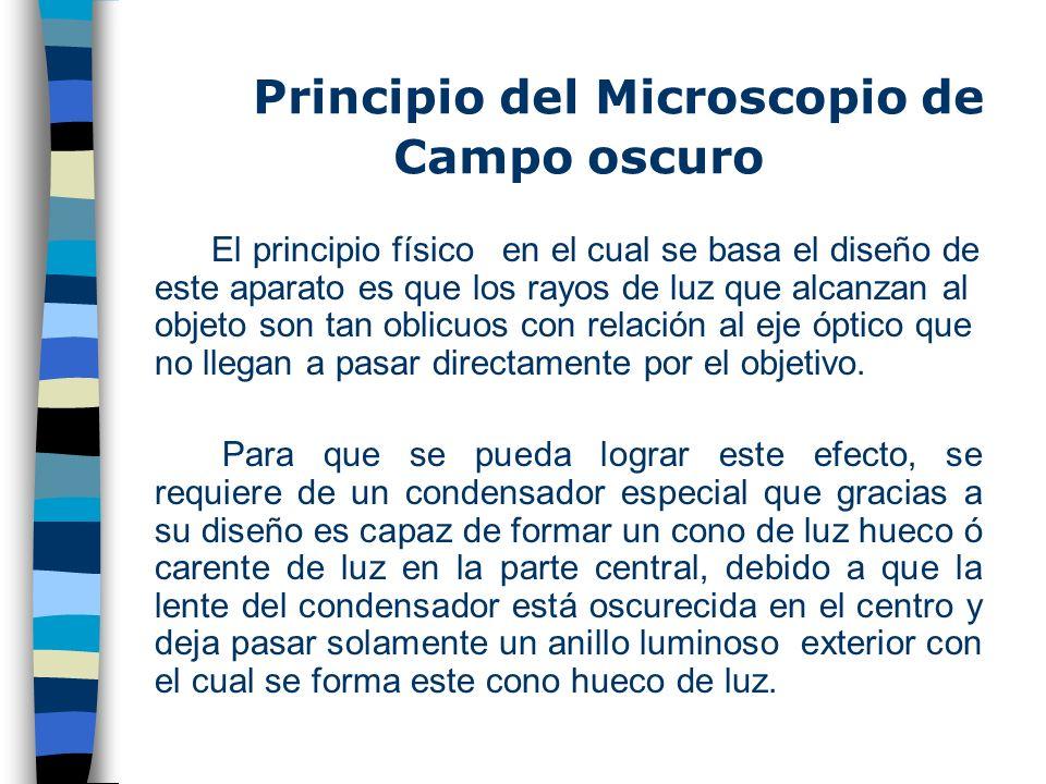 Principio del Microscopio de Campo oscuro