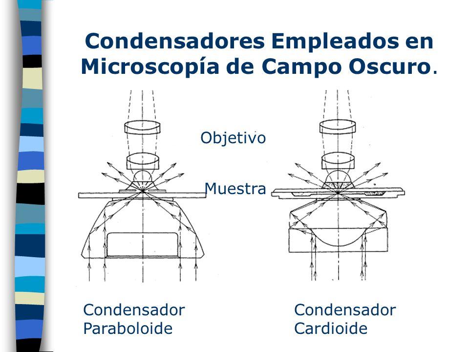 Condensadores Empleados en Microscopía de Campo Oscuro.