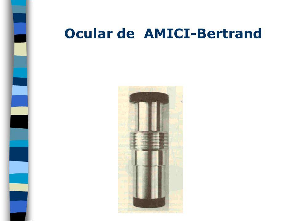 Ocular de AMICI-Bertrand