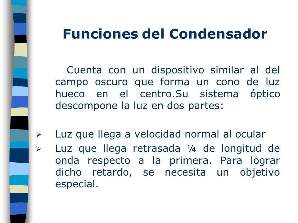 Funciones del Condensador