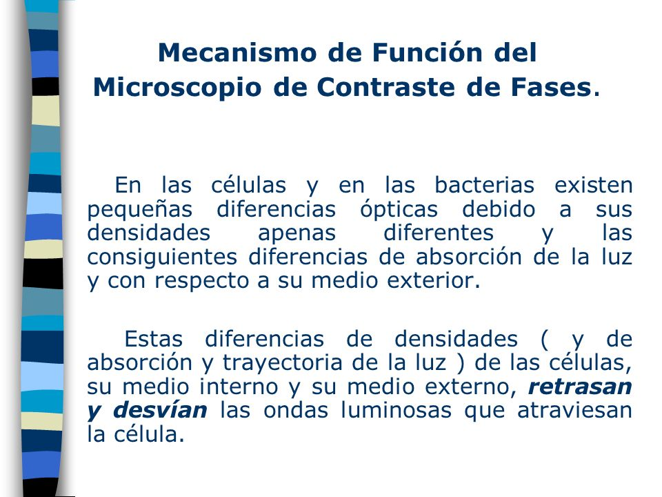 Mecanismo de Función del Microscopio de Contraste de Fases.